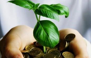 Le marketing vert : Quels intérêts pour son entreprise ?